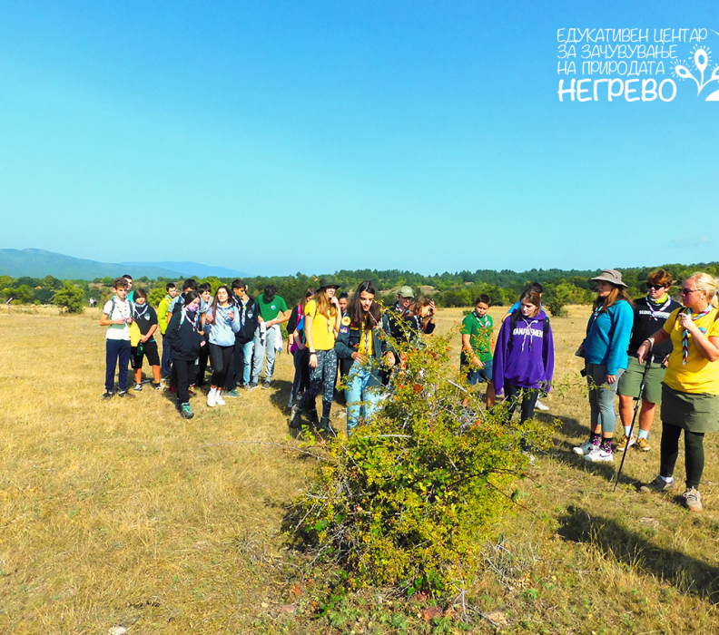 Извидниците од Прв Скопски Извиднички Одред во посета на ЕЦ Негрево